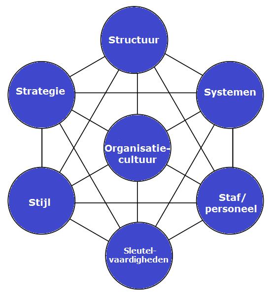 7s model McKinsey voor internetmarketing en internetmarketingplan