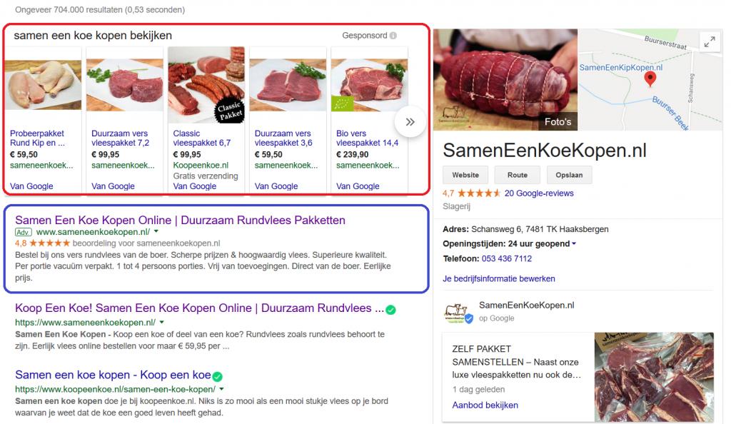 Google SERP met shopping, tekstadvertentie en organische resultaten omcirkeld